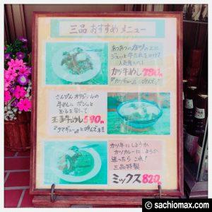【早稲田】52年間愛され続けるカツ牛めし『三品食堂』行ってきた感想