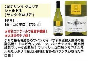 【ワインを嗜む大人になりたい】Amazonシニアソムリエ厳選セット(白)45