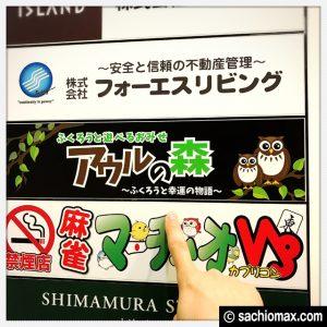 【秋葉原】日本最大級の梟数『フクロウカフェ アウルの森』感想04