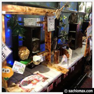 【秋葉原】日本最大級の梟数『フクロウカフェ アウルの森』感想18