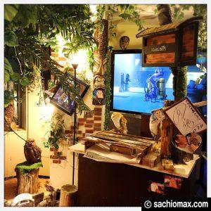 【秋葉原】日本最大級の梟数『フクロウカフェ アウルの森』感想19