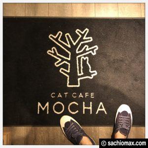 【秋葉原】10分から遊べる猫カフェ『MOCHA』に行ってみた(料金など)04