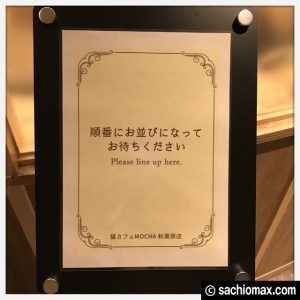 【秋葉原】10分から遊べる猫カフェ『MOCHA』に行ってみた(料金など)05