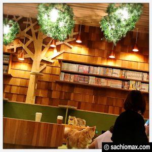 【秋葉原】10分から遊べる猫カフェ『MOCHA』に行ってみた(料金など)07