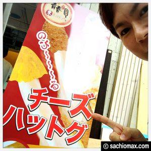 """【チーズドッグ】新大久保の""""伸びるやつ""""が新宿でも食べられるよ☆00"""