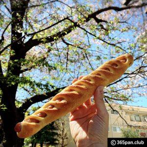 【新所沢】パンを買ってお花見に行こう「パーカーハウス」感想